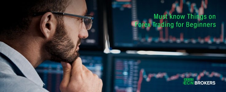 Must know Things on Forex Trading for Beginners